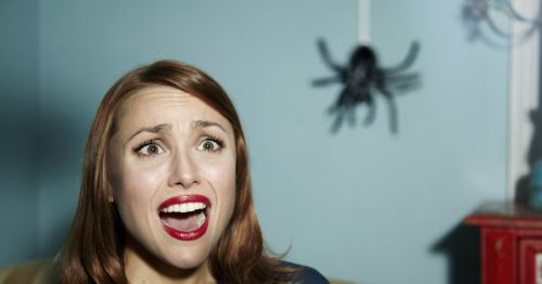 1_Shocked-woman-looking-at-spider.jpg