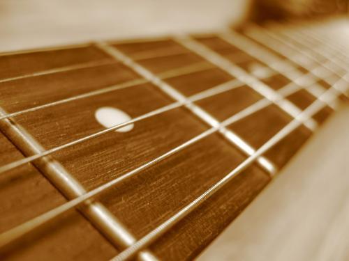 Guitar_fretboard_closeup.jpg