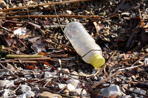 plastic-bottle-1184735_1280.jpg