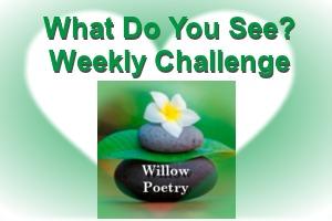 weekly-challenge.jpg