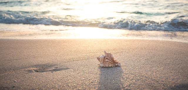 beach-4301479_640.jpg