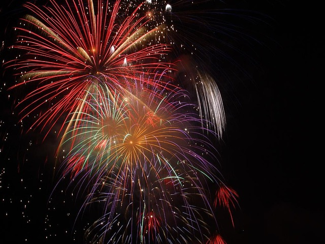 fireworks-3596_640-1.jpg