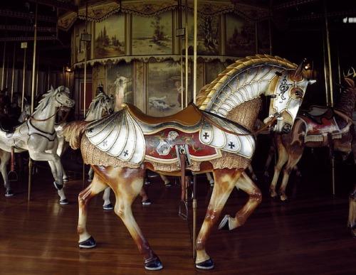 horse-754739_640.jpg